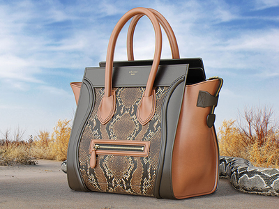 Photorealistic 3D illustration of Celine Luggage Bag