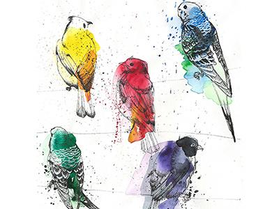 Palette Birdsss paper palette birds bird parrot watercolor ink painting art illustration