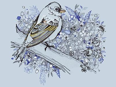Bluebird  doodle leaves illustration pen ink floral flowers bird bluebird
