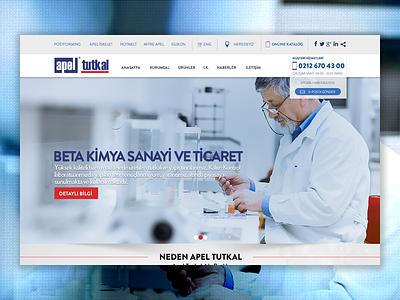 Web Design - Apel web design button ui navigation typography interface site