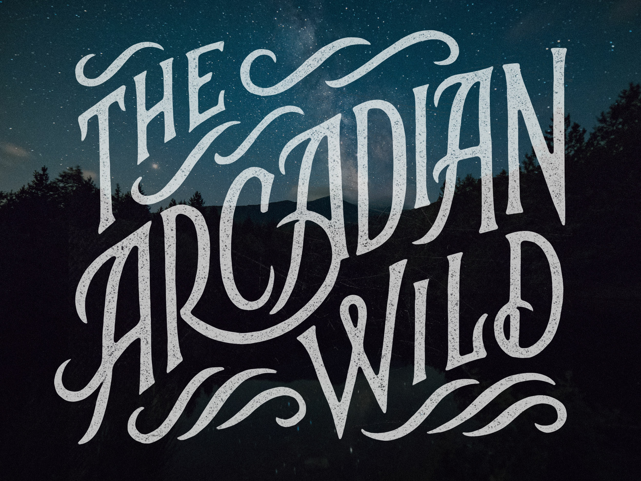 Thearcadianwild
