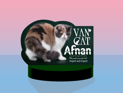 Afnan cat vector branding logo illustration design