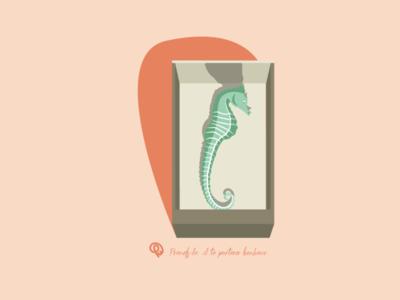L'hippocampe dans la boite d'allumettes. flat design animal design illustration flat illustration grigri luck nostalgia grandma ocean hippocampe sea