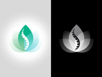 NaturOsteo Logo Mark