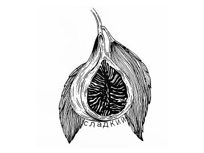 Strange Fruits 1 tattoo art tattoo inktober ink illustration art illustration design artwork