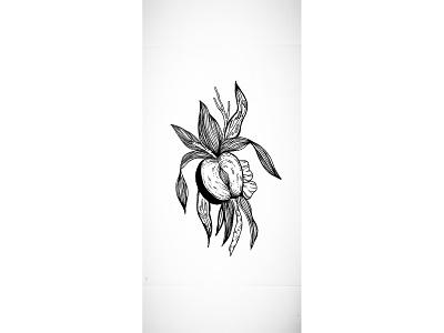 Strange Fruits logo tattoo art tattoo inktober ink illustration art illustration design artwork
