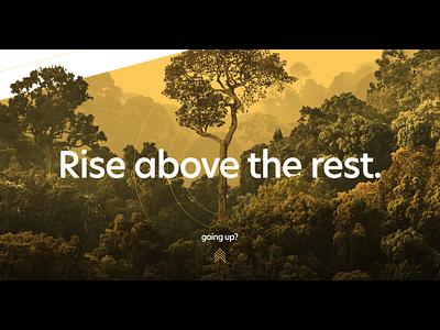 Rise above the rest. circles hero website parallax rainforest