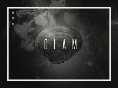 Design for Clam three shells murky shellfish clam calm