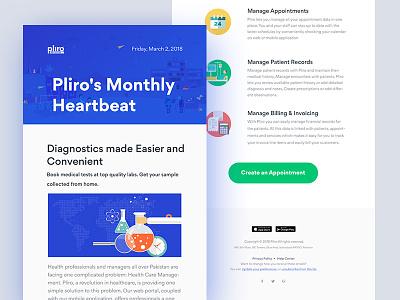 Pliro Newsletter marketing illustration icon email template branding brand identity newsletter email