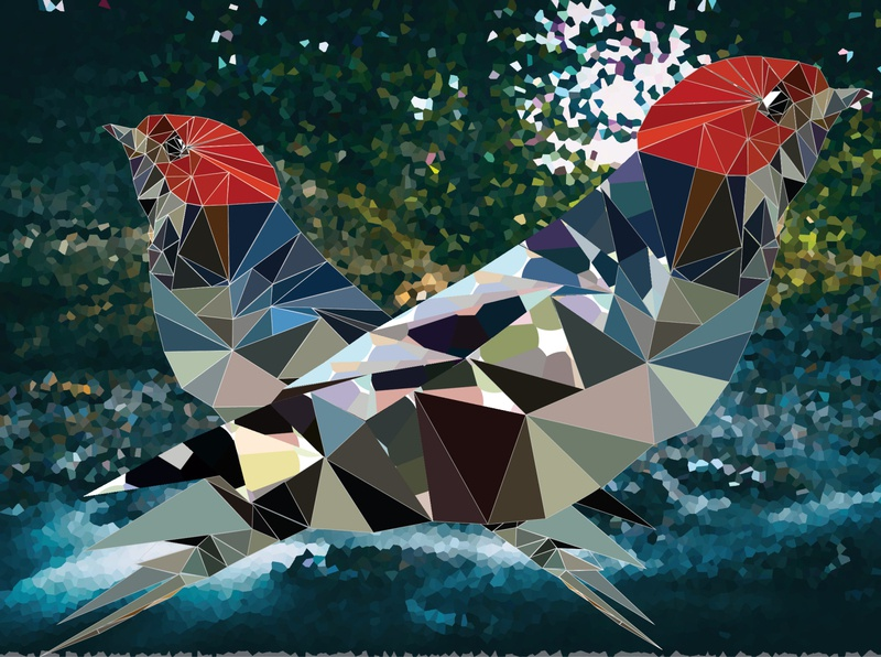 bird poly dribbble birds fly designer logo photoshop design illustrator