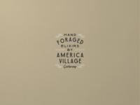 America Village Nº 004