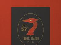 N  029   jessie jay design for true hand