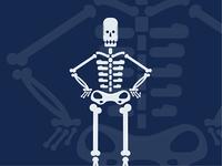 Skeleton / Xray