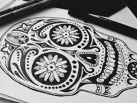 Practice Sketch Series #1
