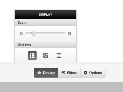 Display options ui webapp