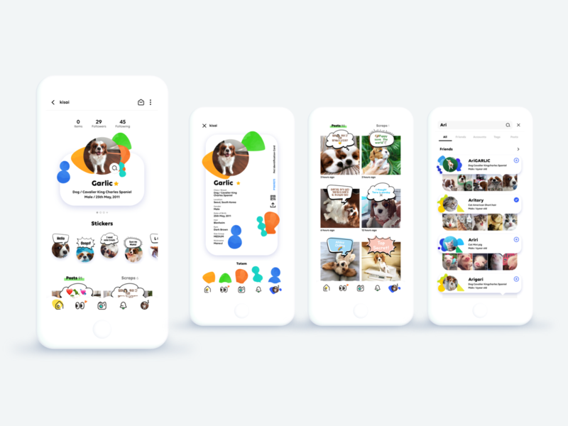 tailly prototype pet app social app tailly pet
