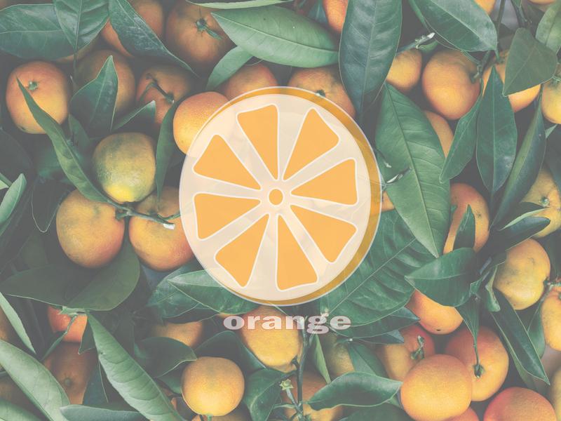 orange natural vegetarian slice vitamin closeup juice healthy sweet organic white isolated juicy fresh background ripe food citrus fruit orange