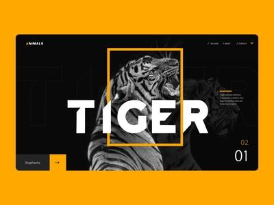 Website Concept V2