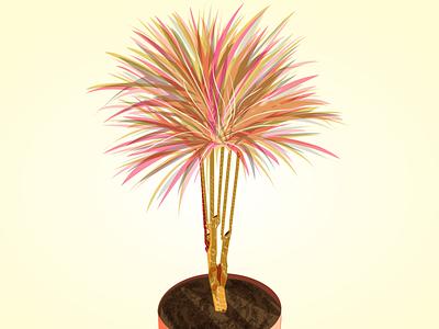 dragon tree illustration art colordraw homeplant plants dragontree plant draw minimal flat design