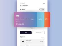 Wallet UI expenses transfer pay cards uichallenge illustrator uidesign vector mobile ui cards ui uiux minimal ux ui design wallet app wallet ui wallet