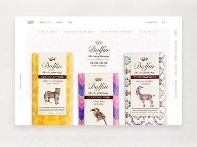 Dolfin Website Redesign Concept