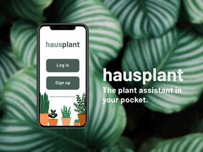 Hausplant Hero 🌿 brand mobile plants minimal illustration flat design ui app