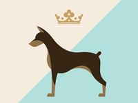 Dog crown dog