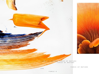 Afterglow paint abstract art nature design branding