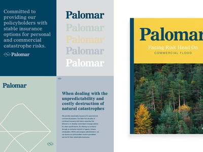 Palomar mountain data nature branding insurance design brand