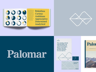 Palomar mountain data nature branding insurance design brand
