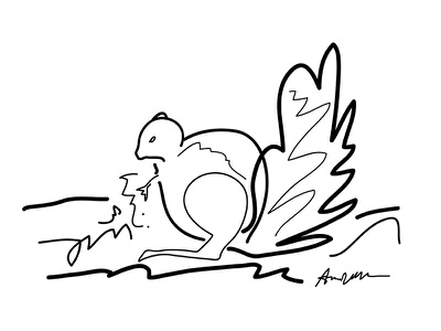 Squirrel and then i woke up series dream drawing black and white illustration gestural sketch squirrel