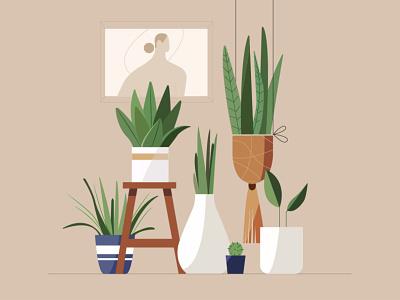 plants decor plants graphicdesign studying design graphics art illustrator illustration motiongraphics motion graphics illustrationart illustration