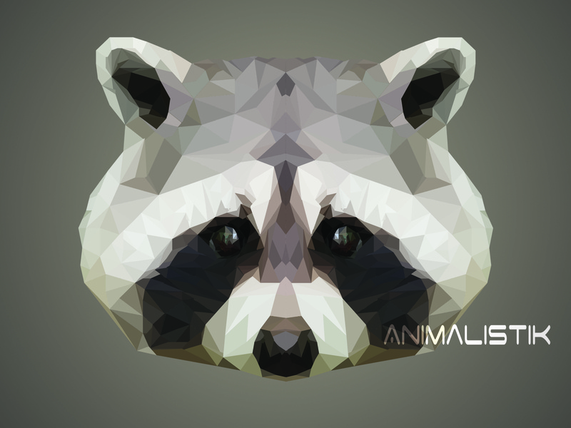 Low Poly Racoon wallpaper racoon poster photoshop