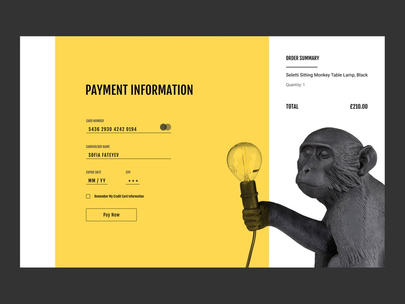 Credit Card Checkout design website creditcard checkout