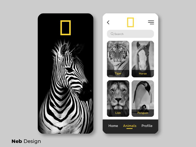 Nat Geo application UI design gray yellow nat geo zebra mobile design mobile ui application design application ui app social media design website ui design ui web design neb design