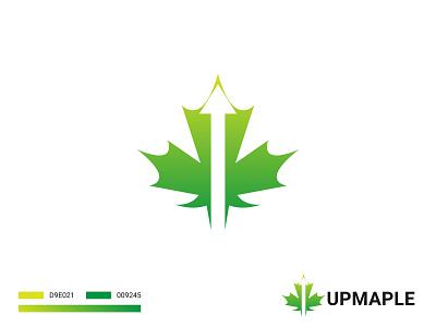 Up Maple Logo green logo vector colorful logo business up logo growth logo financial logo up maple logo maple leaf logo illustration gradient logo app logo modern logo brand identity branding logo design logo