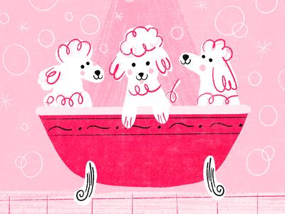 Fancy Poodle Bath