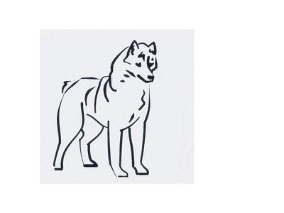Husky sketch dog husky