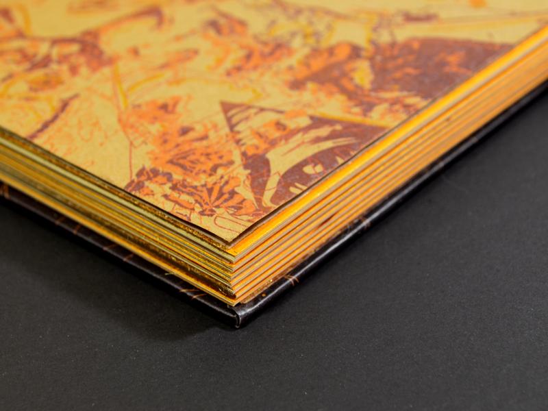 Pelos Cósmicos print design print printing paper book cover book cosmic cat illustration dog illustartion editorial illustration design editorial design illustration