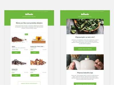 Newsletter templates clean green botanic template newsletter