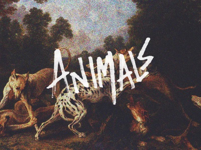 Animals animals lettering design handwritten art hand lettering