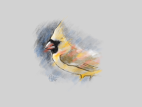 Tweet, tweet, it's a bird