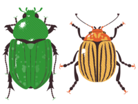 Insect Print Series1
