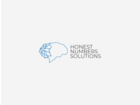 Honest Numbers Solution