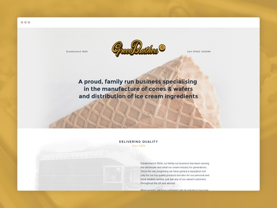 Holding Page website single page holding page web design