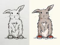 Sneaker Bunny