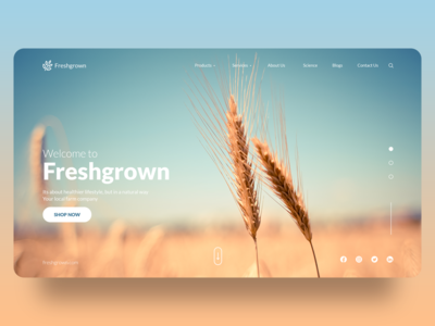 Welcome to Freshgrown! landscape landing page design landing page color branding dribbble design web design uiux creative design uidesign concept adobe xd