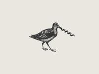 Corkscrew Bird
