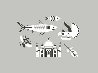 Mas Icons wasp leaf taj mahal triceratops skull fish shark