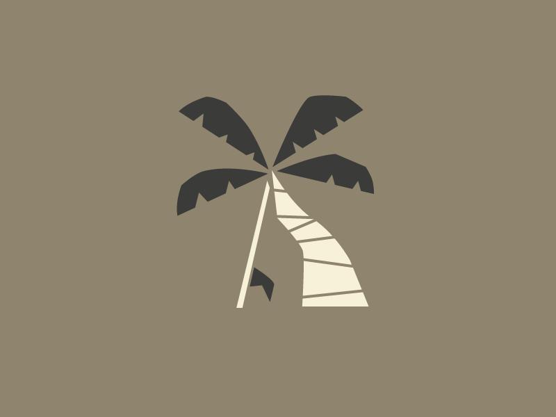 Palm tree surf surfboard costa rica palm